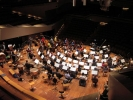 At the heart of the Orchestra